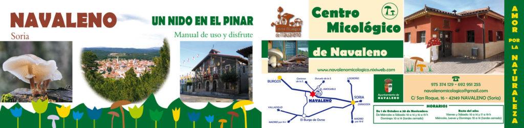 Navaleno (Soria)
