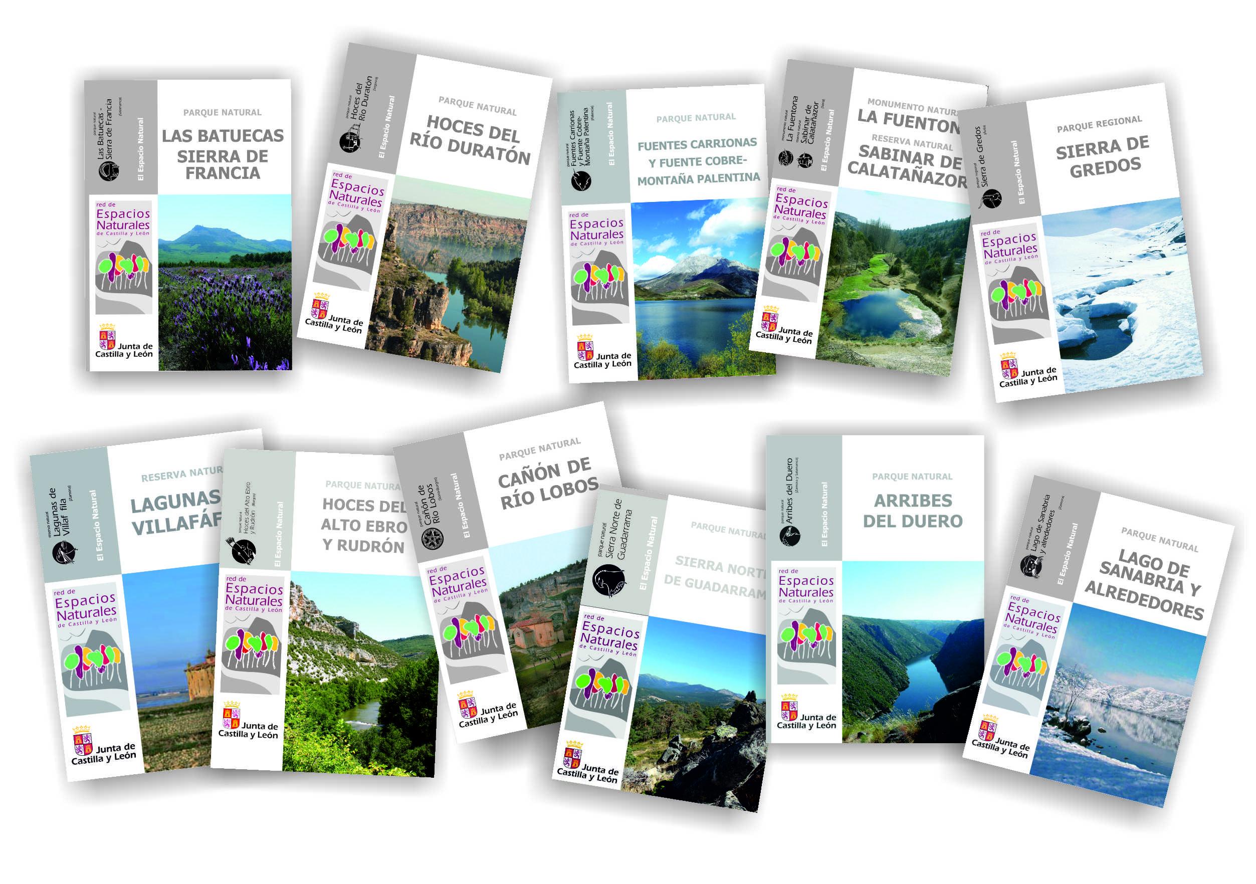 Publicaciones temáticas oficiales